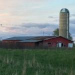 3 Parlor & Free Stall Barn