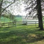 8  240-White Barn 1