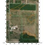 Martin-Soil Map_Page_1