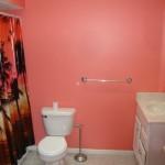 UPSTAIRS BATH & SHOWER (2)